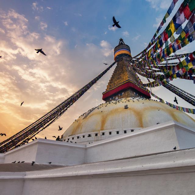"""Boudhanath Stupa"" stock image"