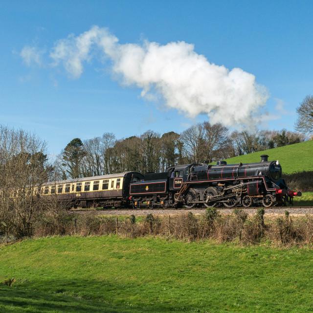"""BR Standard Class 4 - No.75014"" stock image"