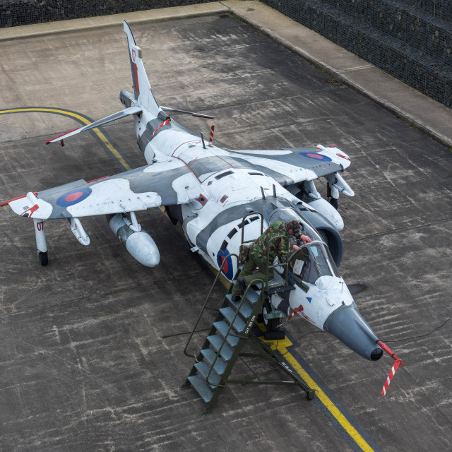 """""""RAF Harrier GR3"""" stock image"""