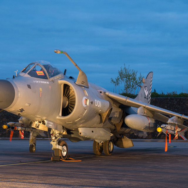 """Sea Harrier"" stock image"