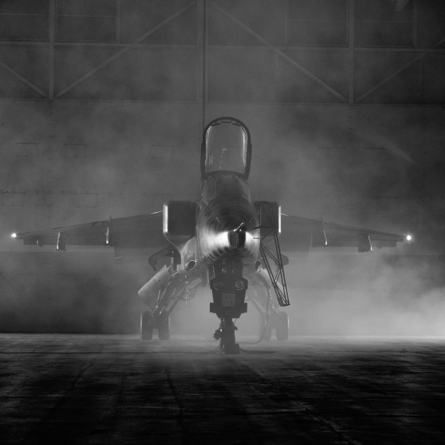 """Jaguar in the smoke"" stock image"
