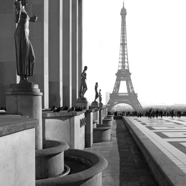 """""""Eiffel Tower View"""" stock image"""