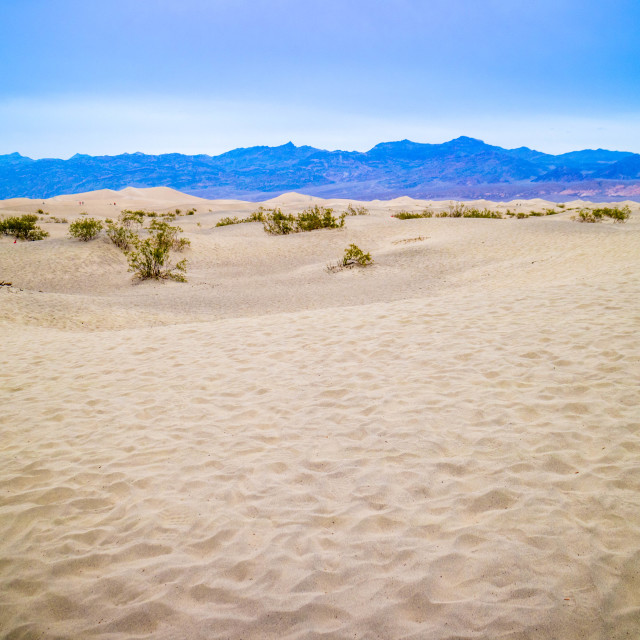 """Mesquite Flat sand dunes in Death Valley National Park"" stock image"