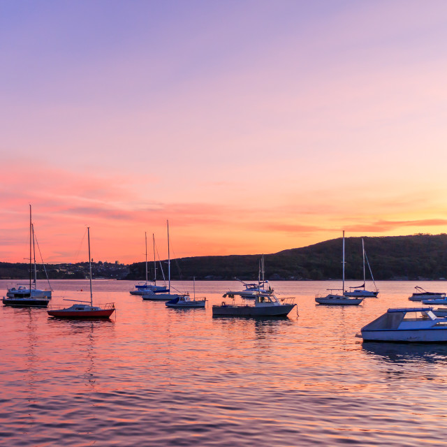 """""""Sunset over Manly harbour"""" stock image"""