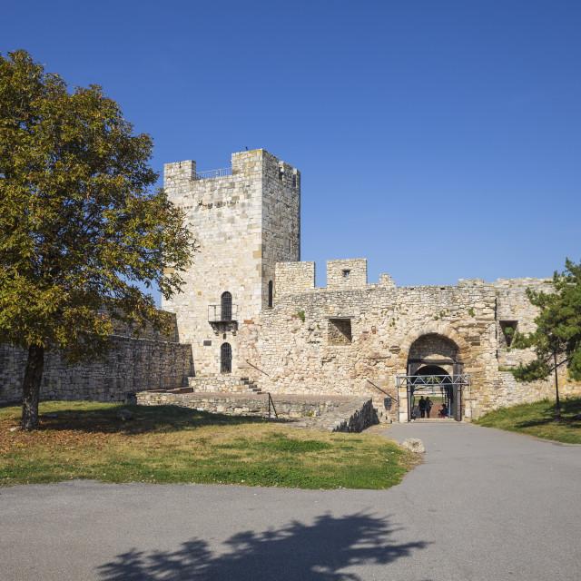 """""""Serbia, Belgrade, Kalemegdan Park, Belgrade Fortress, Diadar Tower"""" stock image"""