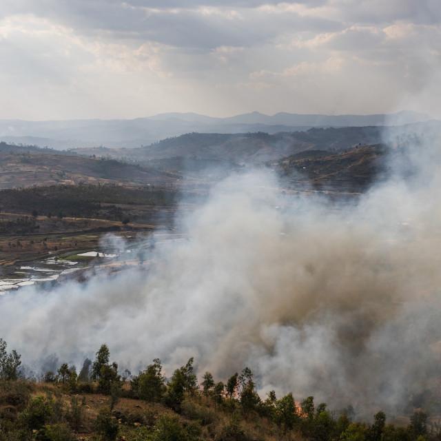 """Slash and burn forest fire, Antsirabe, Vakinankaratra Region, Madagascar"" stock image"