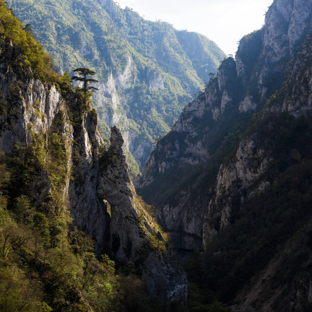 """Tara River Canyon Gorge, Durmitor National Park, Montenegro, UNESCO World..."" stock image"