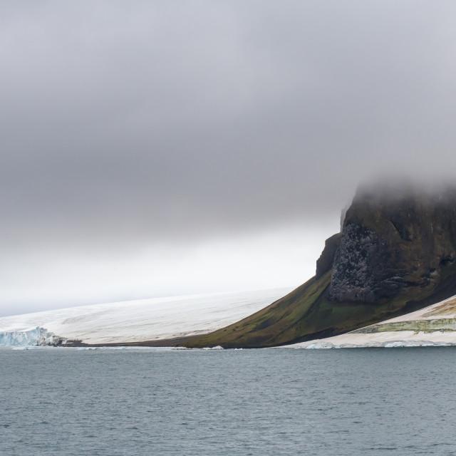 """Massive bird cliff, Champ Island, Franz Josef Land archipelago, Russia"" stock image"