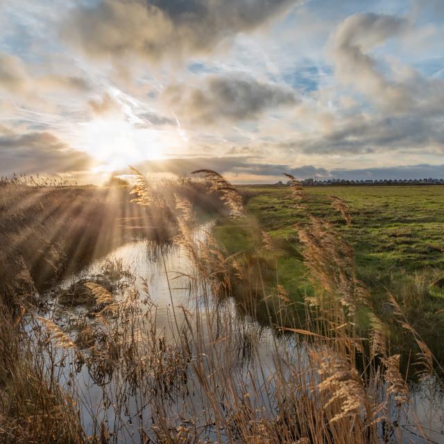 """Normans Bay from Pevensey Marshland"" stock image"