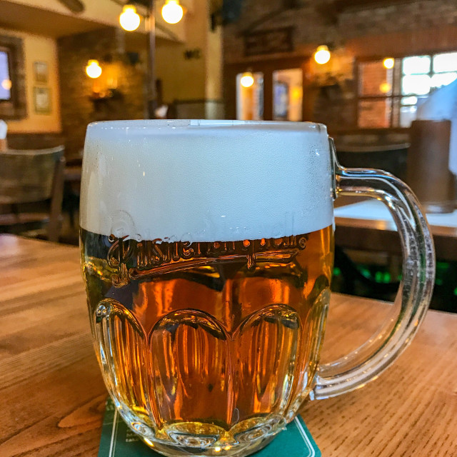"""Glass of foaming Czech pilsner lager beer"" stock image"