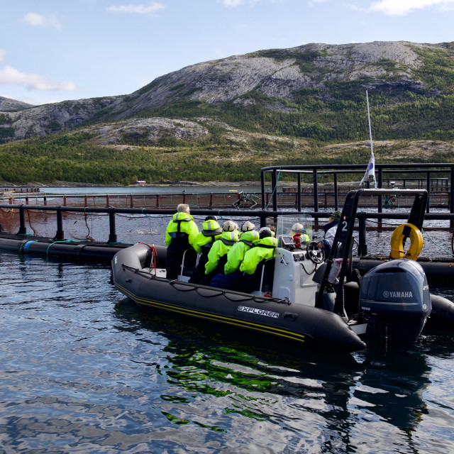 """Tourists visiting fish farm in Norway"" stock image"