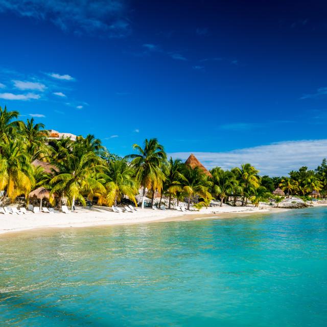 """""""Beach in Riviera Maya"""" stock image"""
