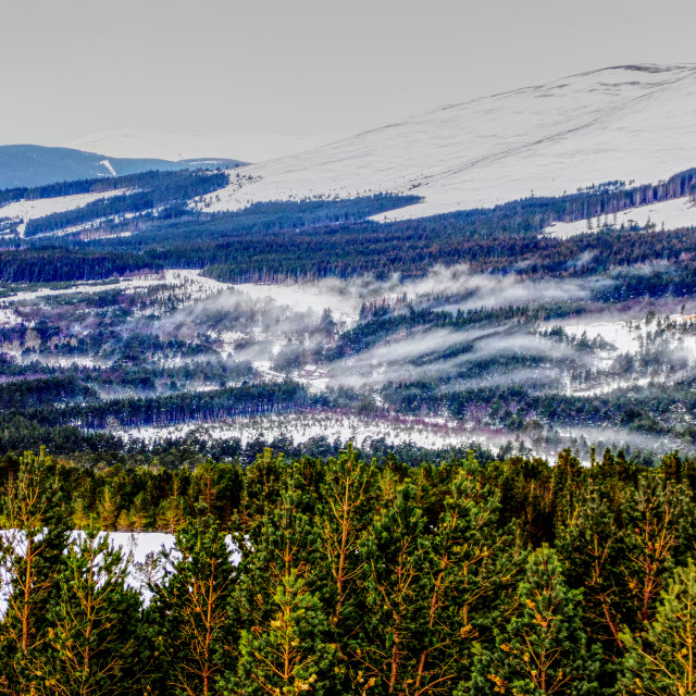 """""""Snow Over the Cairngorms"""" stock image"""