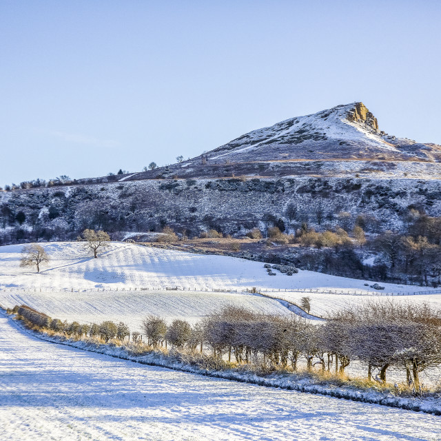 """""""A Snowy Roseberry Topping."""" stock image"""