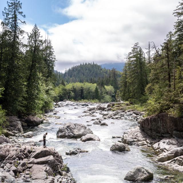 """Creek"" stock image"
