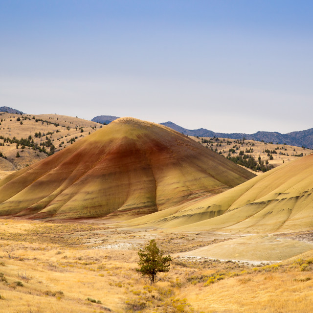 """""""Painted hills"""" stock image"""