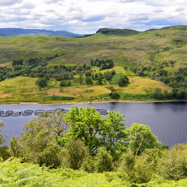 """Fish farm on Loch Awe"" stock image"