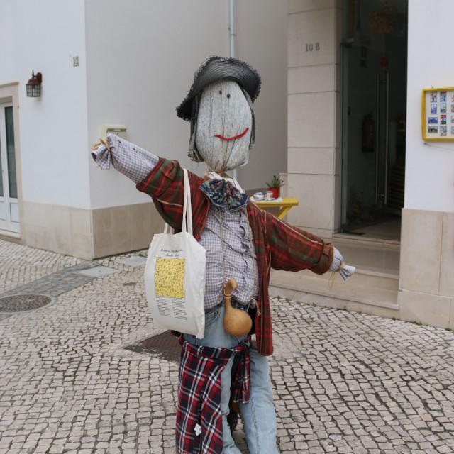 """Scarecrow - espantapajaros"" stock image"