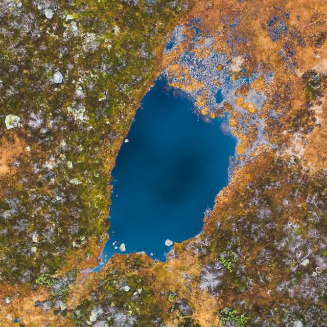 """Aerial Pond"" stock image"