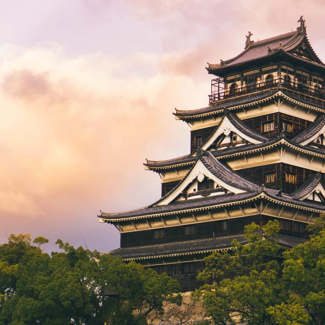 """Hiroshima Castle"" stock image"