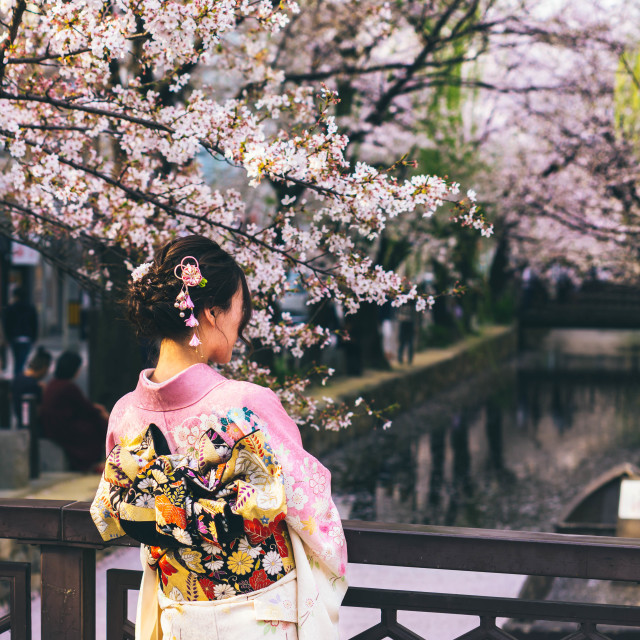 """Japanese Spring"" stock image"