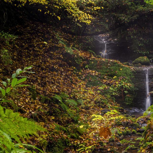 """Carriden Falls"" stock image"