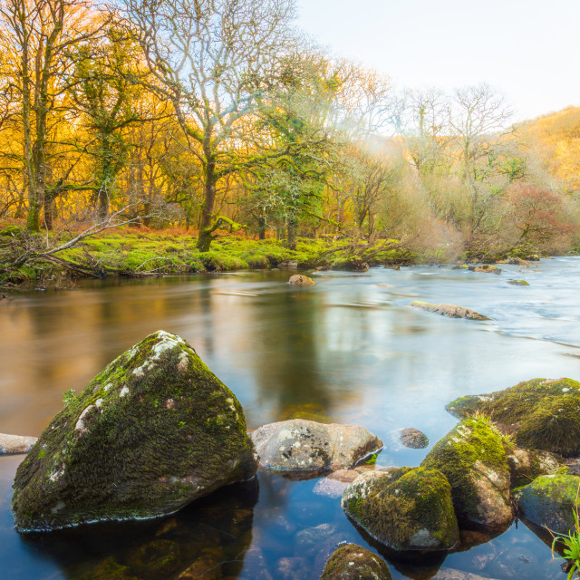 """""""Calm on the River Dart"""" stock image"""