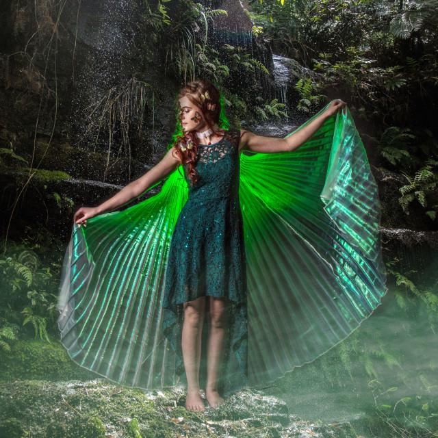 """""""Woodland Fairy"""" stock image"""