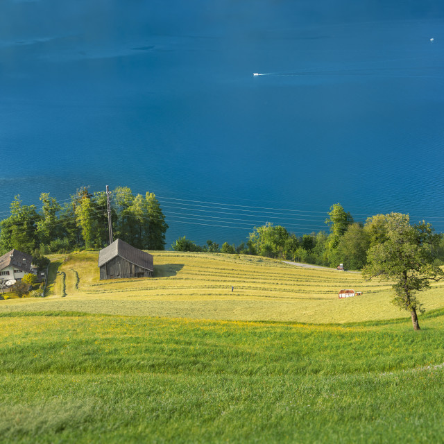"""Green fields and blue lake in Swiss village"" stock image"