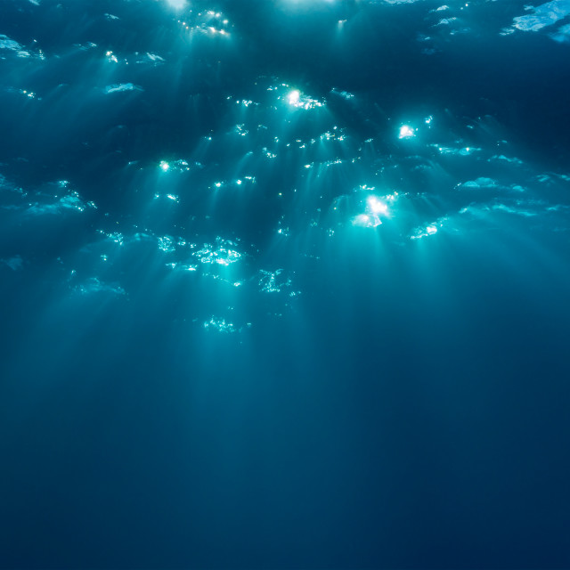 """Underwater"" stock image"