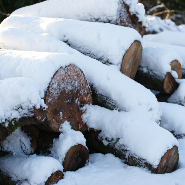 """Snowy log pile"" stock image"