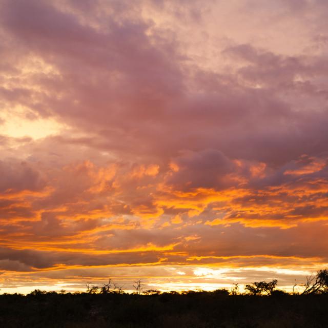 """""""Sunset near Etosha National Park"""" stock image"""