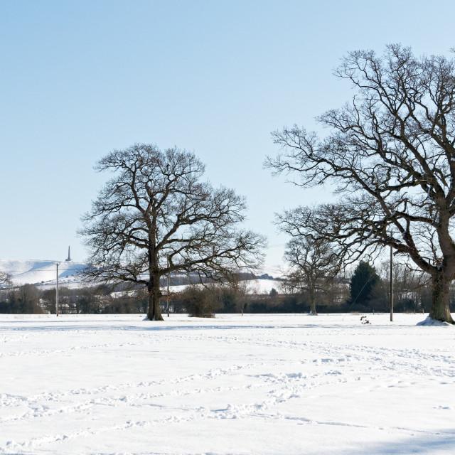 """Snowy Cherhill Downs"" stock image"