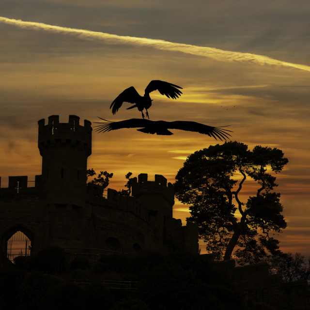 """Castles and Condors"" stock image"
