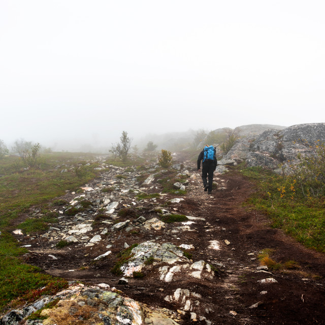 """Hiker on foggy trail"" stock image"