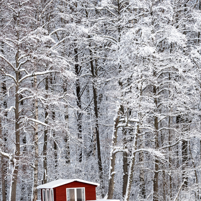 """Red hut in winter"" stock image"