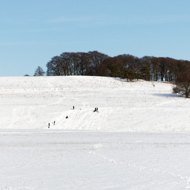"""""""Sledging in the Snow"""" stock image"""