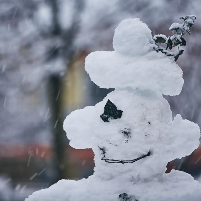 """Head of big snowman"" stock image"