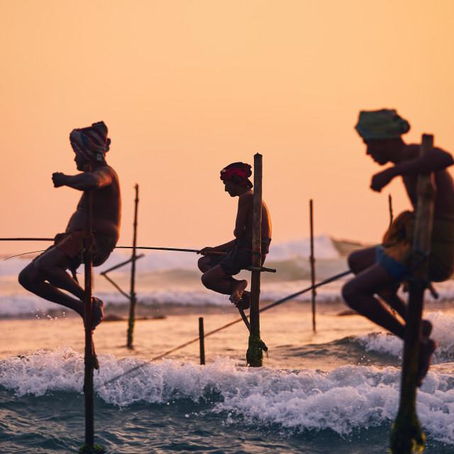"""""""Traditional stilt fishing in Sri Lanka"""" stock image"""
