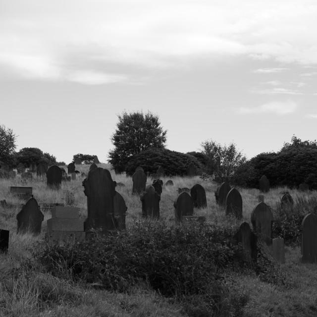 """Group of gravestones"" stock image"