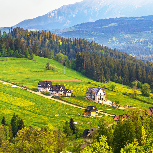 """Poland spring Tatra mountains panorama"" stock image"
