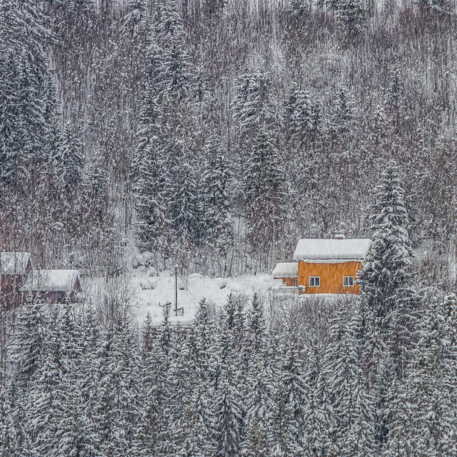 """""""Snowy landscape in Norway"""" stock image"""