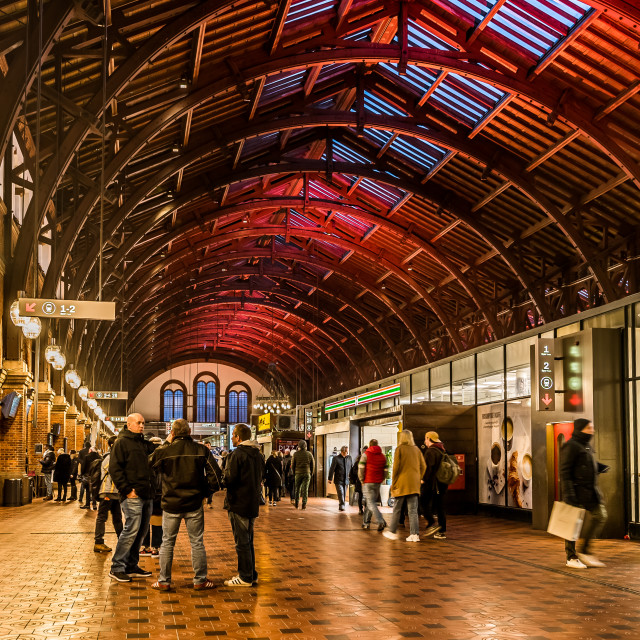 """Interior of the Copenhagen central station"" stock image"
