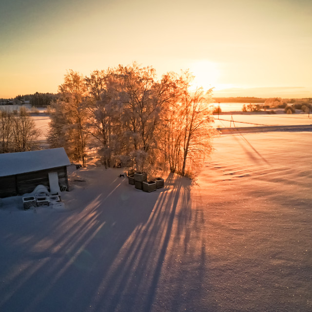 """""""Long Shadows On The Winter Fields"""" stock image"""