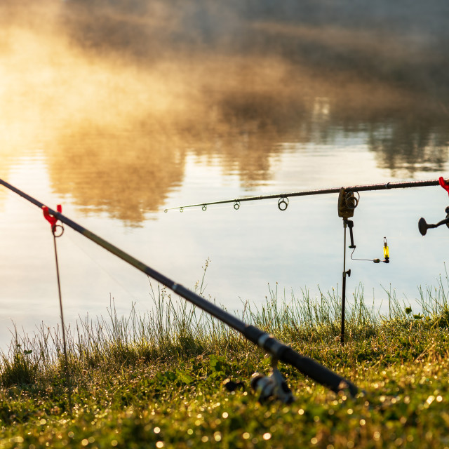 """""""Carp fishing rods misty lake."""" stock image"""