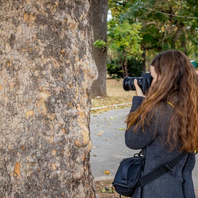 """""""Female photographer and tree trunk"""" stock image"""