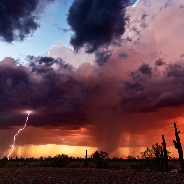 """Lightning from a sunset thunderstorm."" stock image"