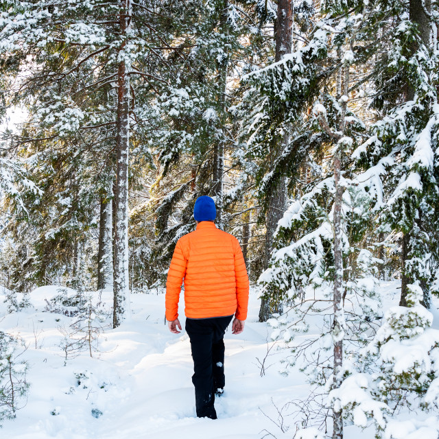 """Man in snowy forest"" stock image"