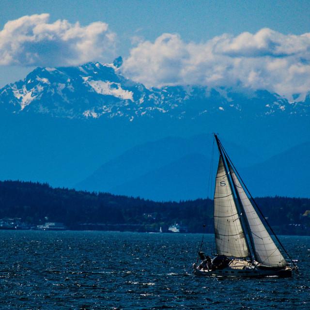 """Sailboat on Puget Sound"" stock image"