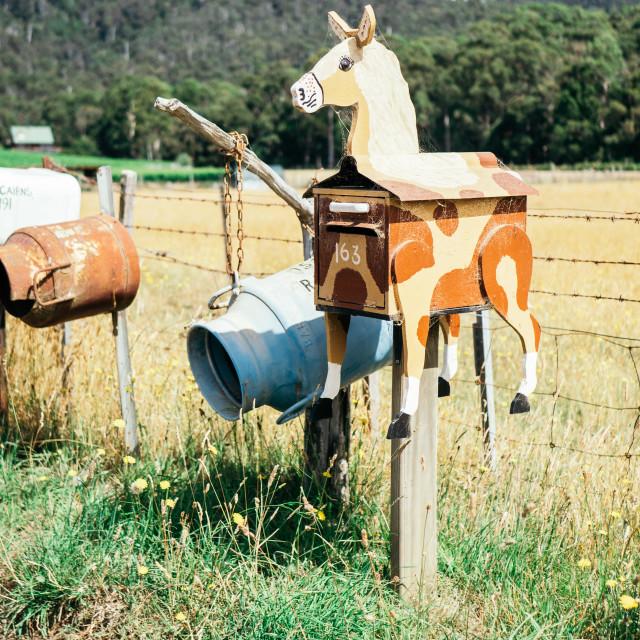 """""""Donkey letterbox"""" stock image"""